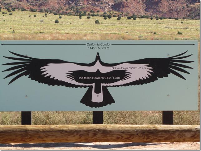 condor sign1