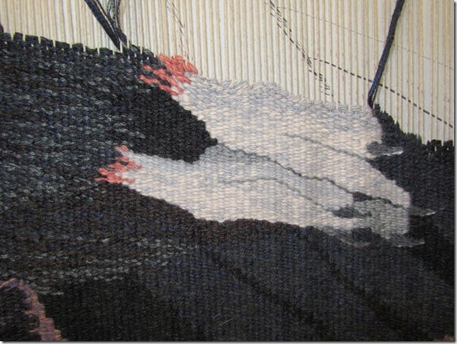 condor 1-26-12 feet detail