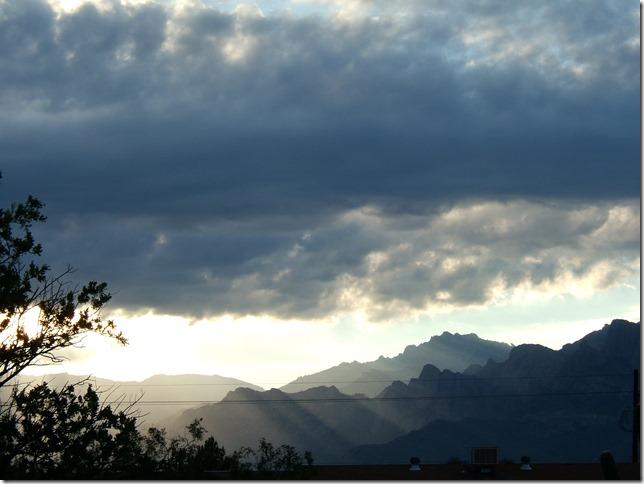 monsoon morn3